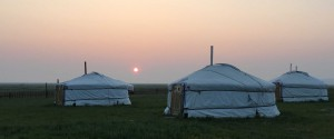Orkhon Camp
