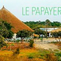 Le Papayer